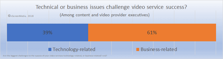 business versus technical issues video business owners